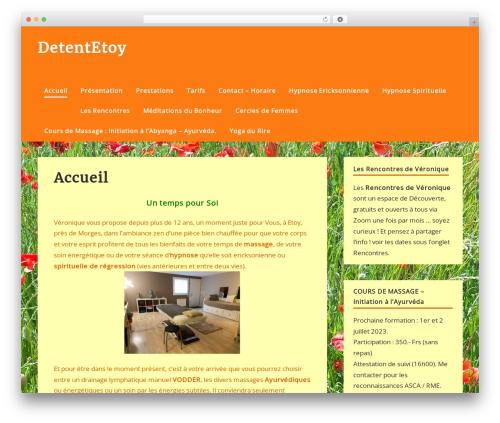zeePersonal WP template - detentetoy.com