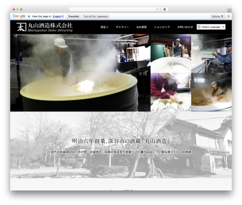 Plain WordPress theme - maruyamasz.com