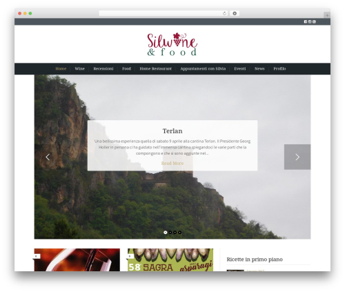 Cookbook WP theme - silwineandfood.com
