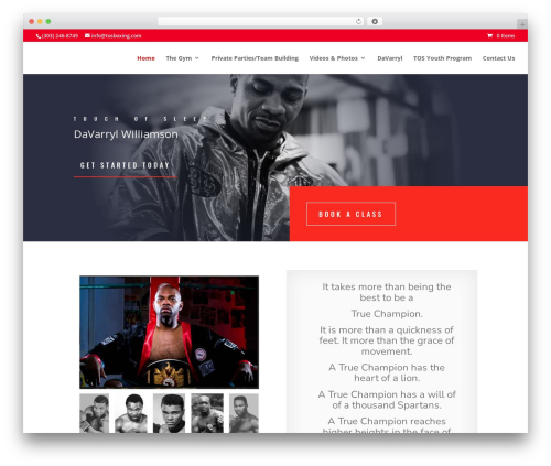 WP template Divi - tosboxing.com