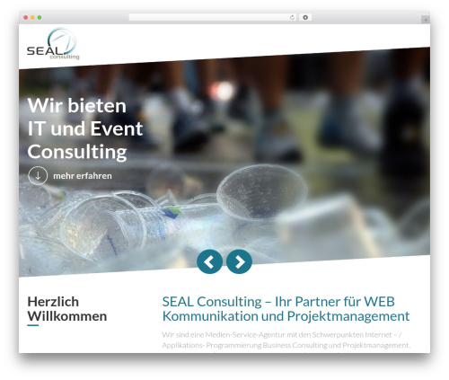 seal WordPress news template - seal-consulting.com