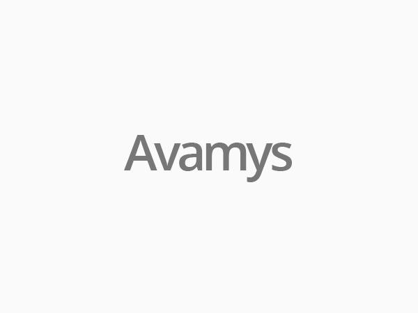 Avamys WP business WordPress theme
