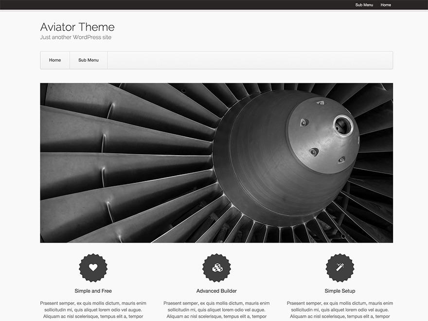Aviator free WordPress theme