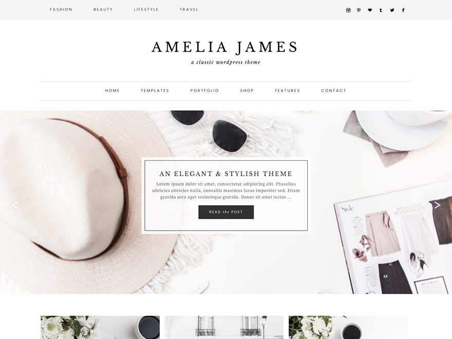 Best WordPress theme Amelia