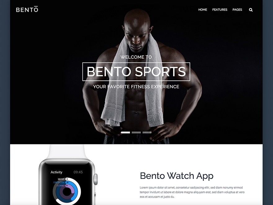 Best WordPress theme Bento