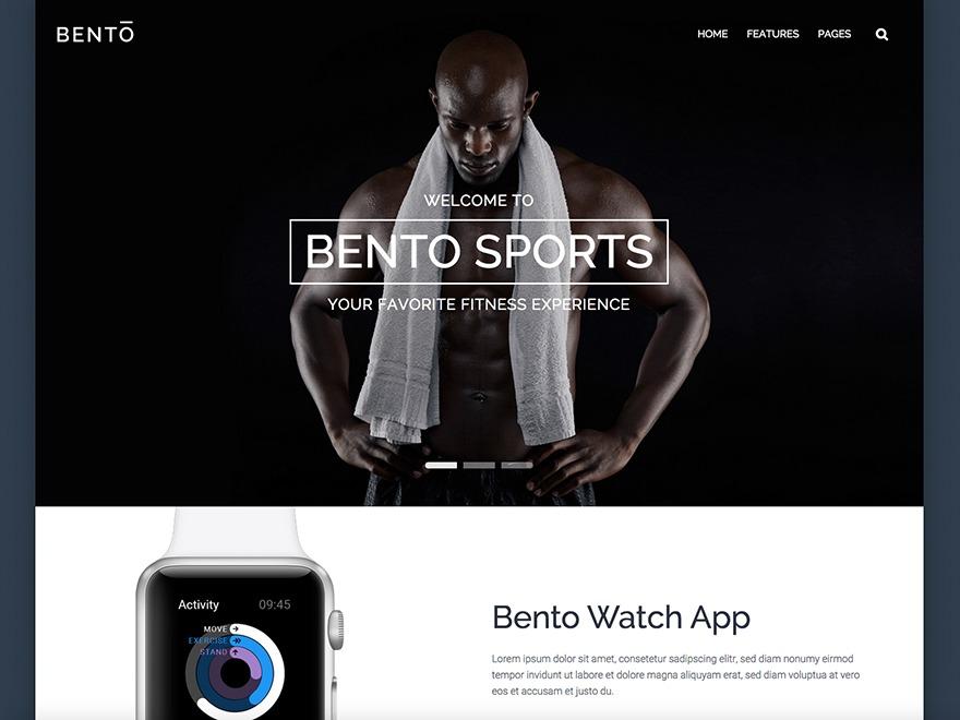 Best WordPress theme Bento