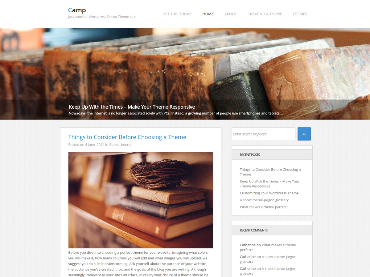 Camp WordPress ecommerce theme