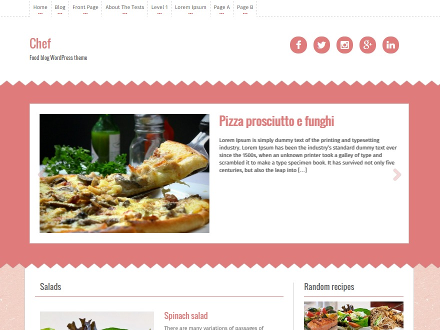 Chef free website theme