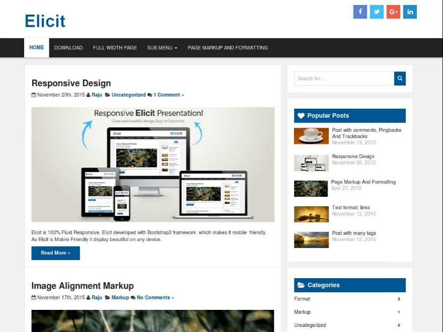 Elicit best free WordPress theme