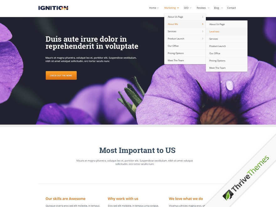 Ignition Child Theme WP template