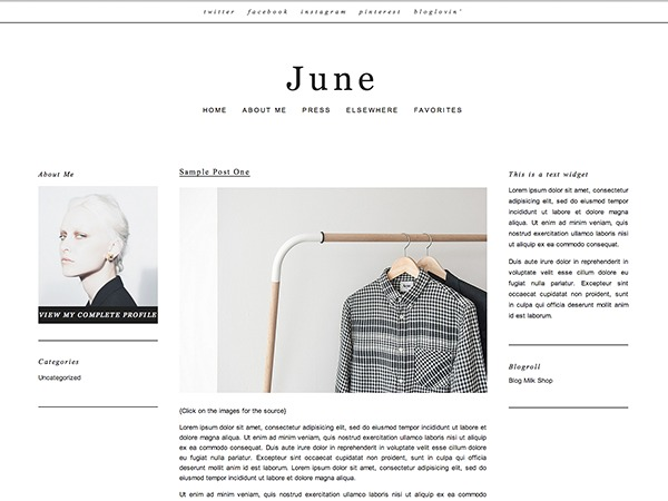 June best WordPress theme