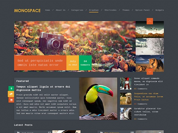 Monospace by MyThemeShop WordPress ecommerce template