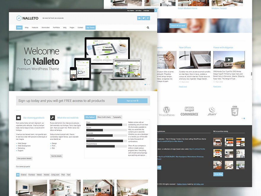 Nalleto business WordPress theme