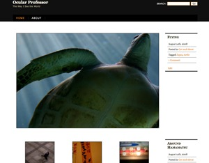 Ocular Professor WordPress blog template