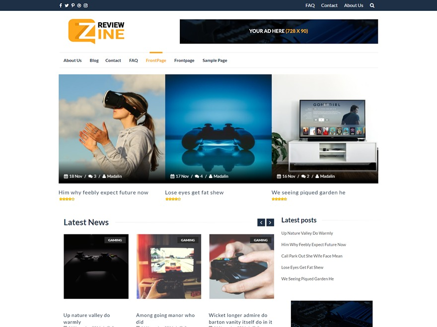 ReviewZine free WordPress theme