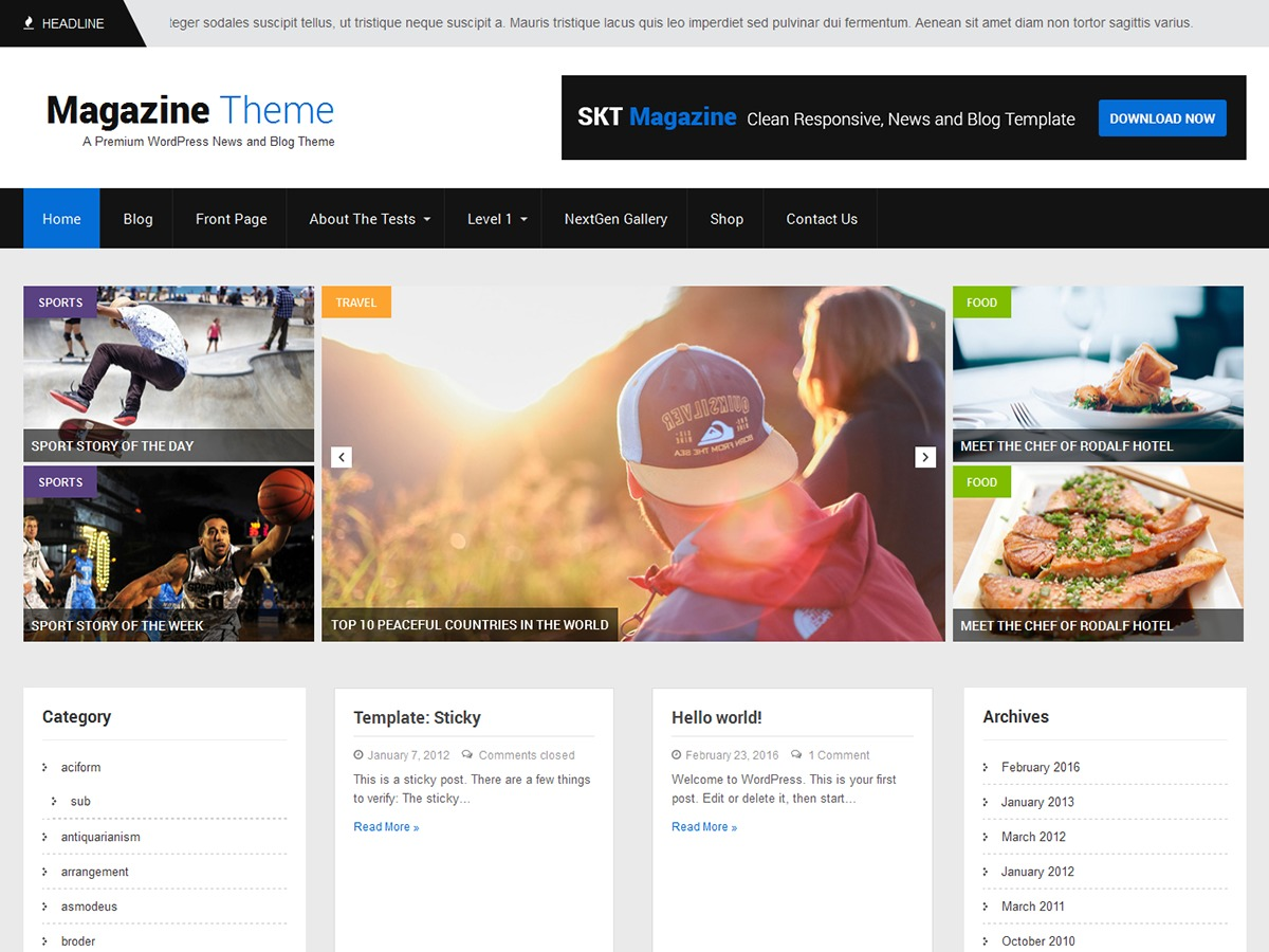 SKT Magazine WordPress theme download