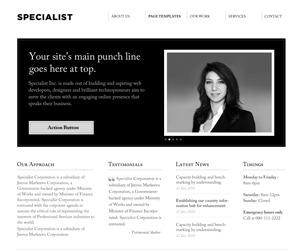 Specialist WordPress theme