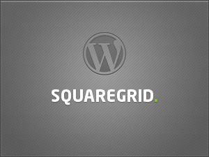 Square Grid theme WordPress portfolio