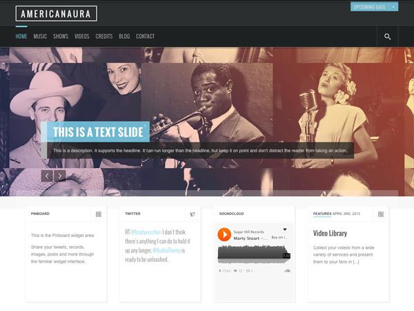 WordPress theme Americanaura