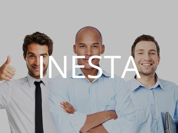 WordPress theme Inesta