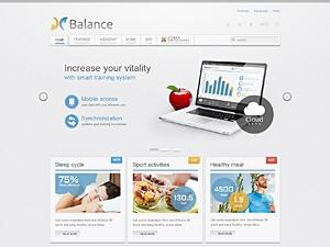 WordPress website template Balance