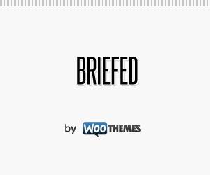 WordPress website template Briefed