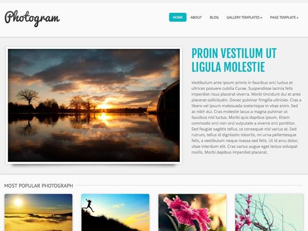 WordPress website template Photogram