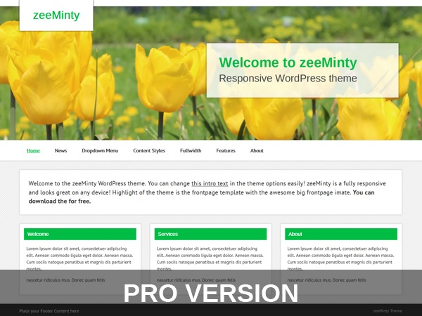 zeeMintyPro top WordPress theme