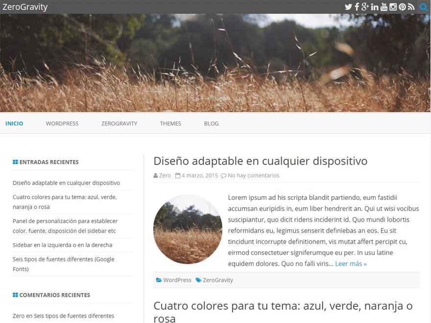 ZeroGravity WordPress theme