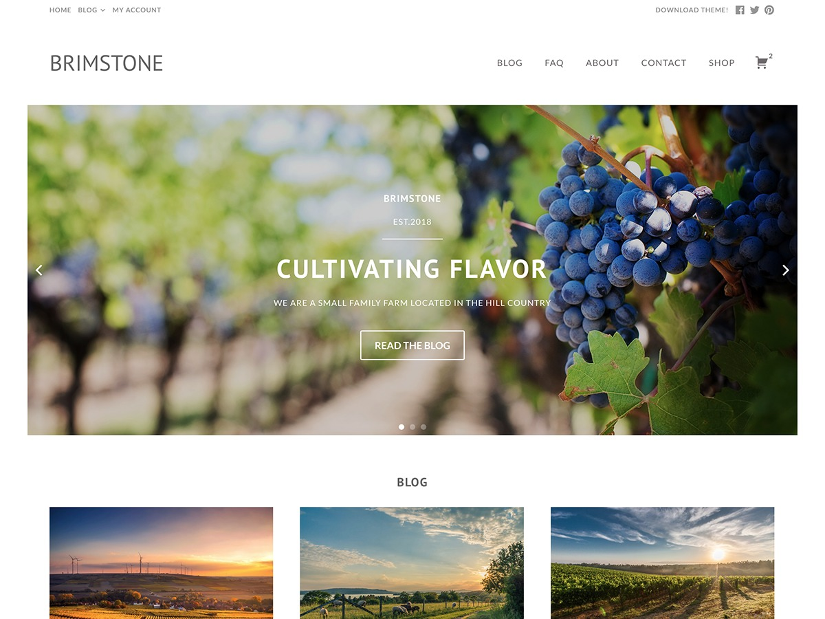 Brimstone WordPress ecommerce theme
