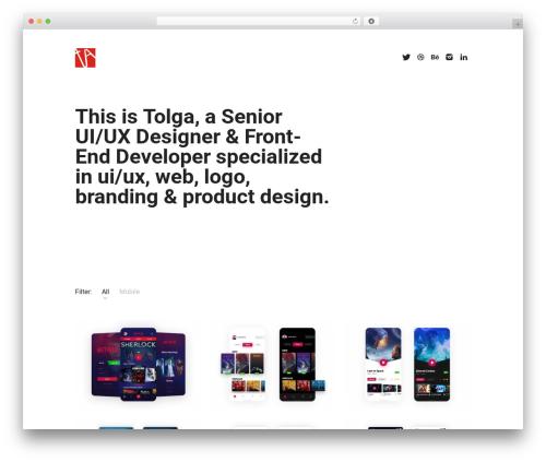 Skills WordPress shop theme - tolgaaskin.com