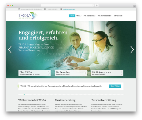 WordPress visual-form-builder-pro plugin - triga-consulting.de