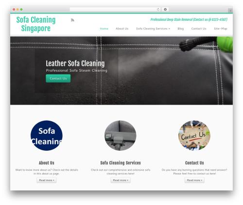 Customizr Pro WordPress theme - sofacleaningsingapore.com
