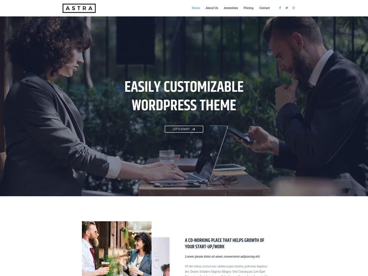 Astra theme WordPress portfolio