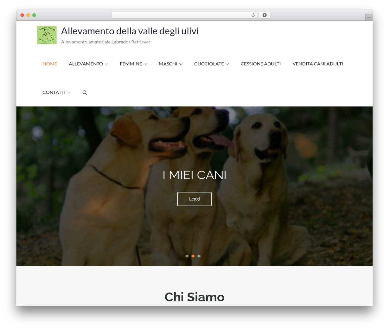 Pet Business business WordPress theme - allevamentodellavalledegliulivi.com