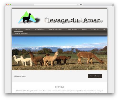 Discovery WordPress template free download - alpagaleman.com