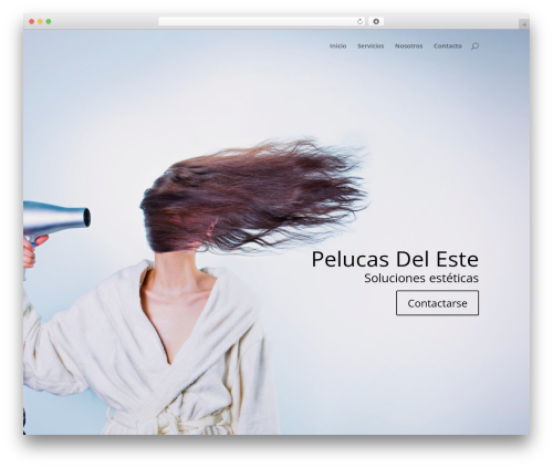 Divi WordPress template - pelucasdeleste.com