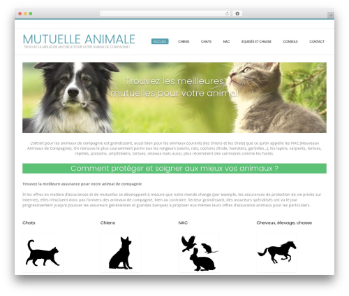 WP template Conica - mutuelle-animal.com