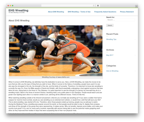 Avien Light theme WordPress - ehswrestling.com