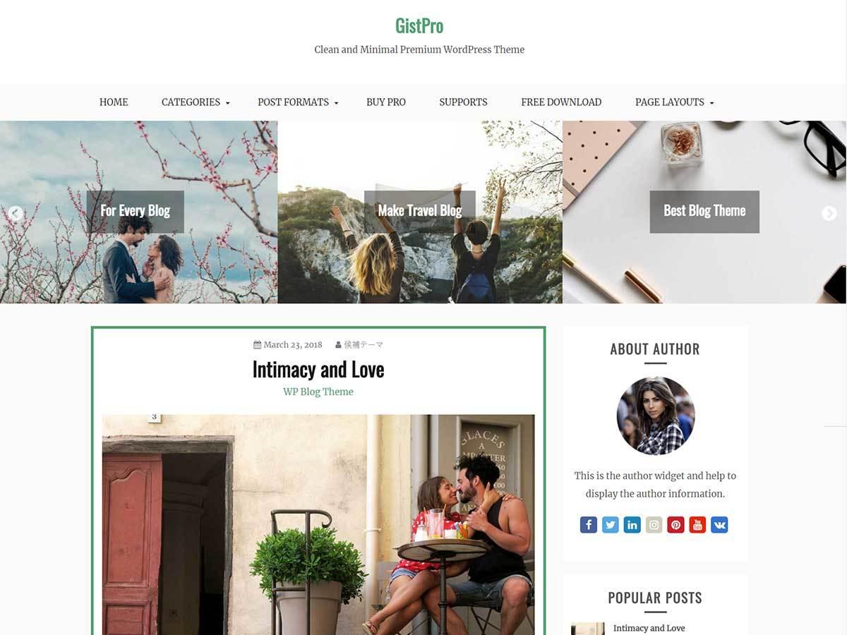 GistPro best WordPress magazine theme