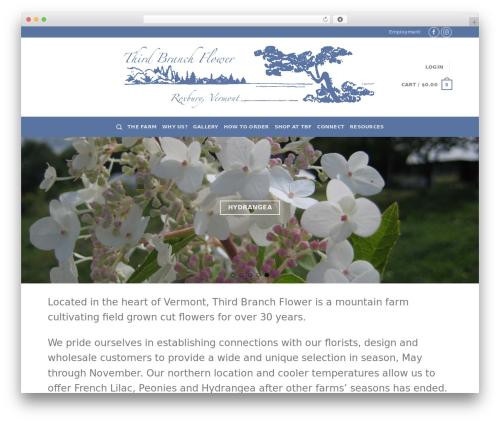 Flatsome best WordPress template - thirdbranch.com
