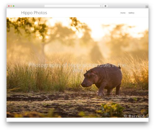 Theme WordPress Divi - hippophotos.com