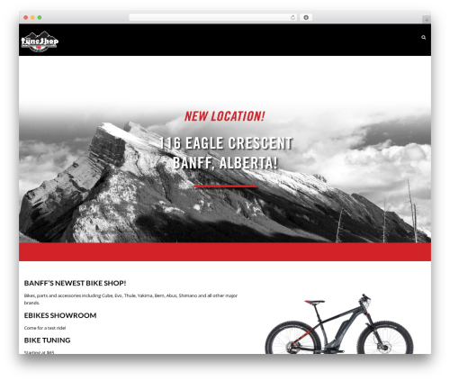 Lavish Pro WP template - thetuneshop.ca