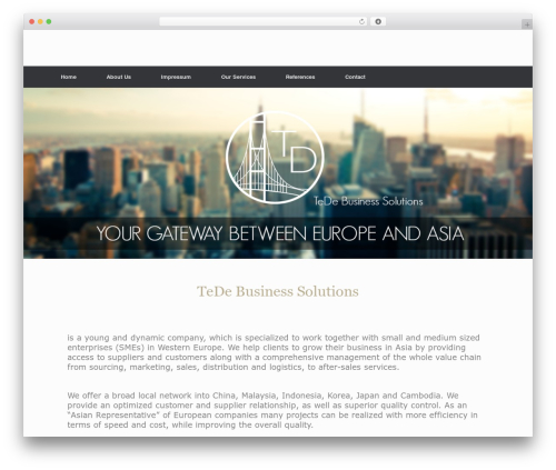 Vantage WordPress page template - tede-business.com