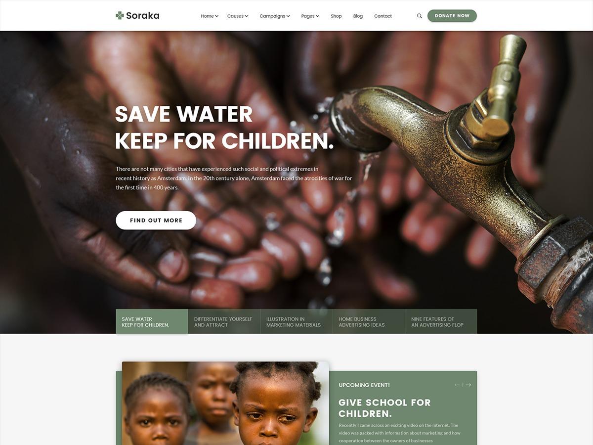 WordPress website template DGT Soraka