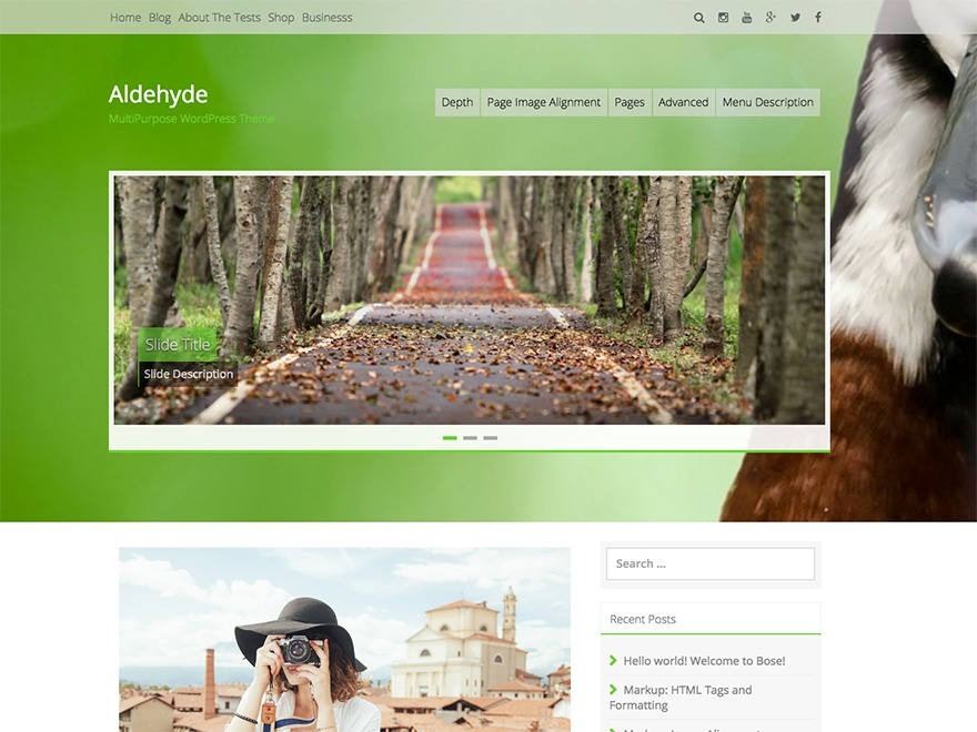 WordPress website template Aldehyde Child