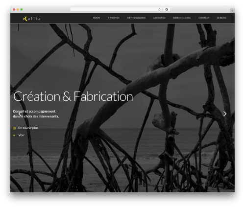 WordPress theme Attractor Theme - kallia.com