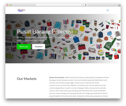 Divi WordPress theme - queenpromosindo.com