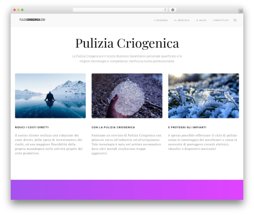 Modular best WordPress theme - puliziacriogenica.com
