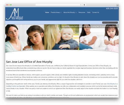Template WordPress Celestial - anemurphylaw.com
